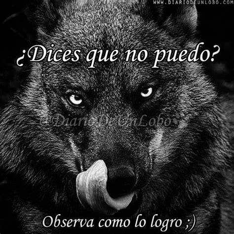 imagenes de lobos tristes diario de un lobo talisman pinterest diario lobos y