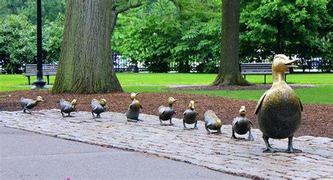 ducks  peacocks  dunfermline book inspired