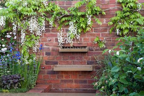 wisteria brick garden wall water feature