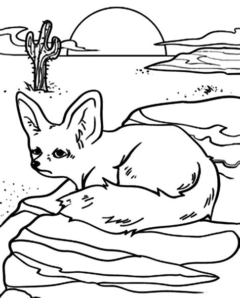 kit fox coloring page pin desert fox coloring page on pinterest