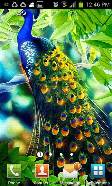 live wallpaper android java peacock feather live wallpaper free android live wallpaper