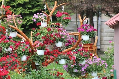 imagenes de jardines con geranios jardiner 237 a y paisajismo con estilo para su jard 237 n