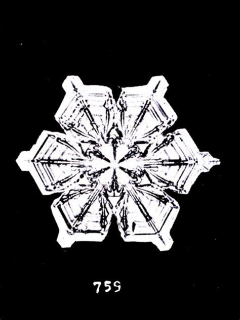 wilson bentley the snowflake photographs