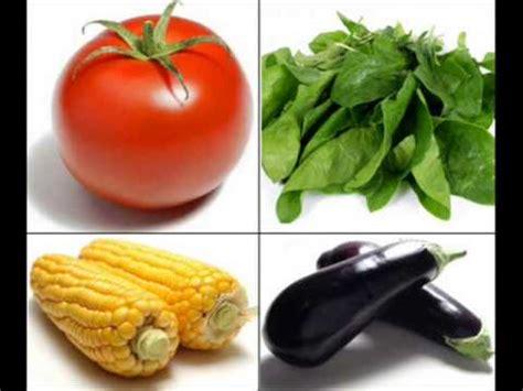 descomposicion de los alimentos  youtube
