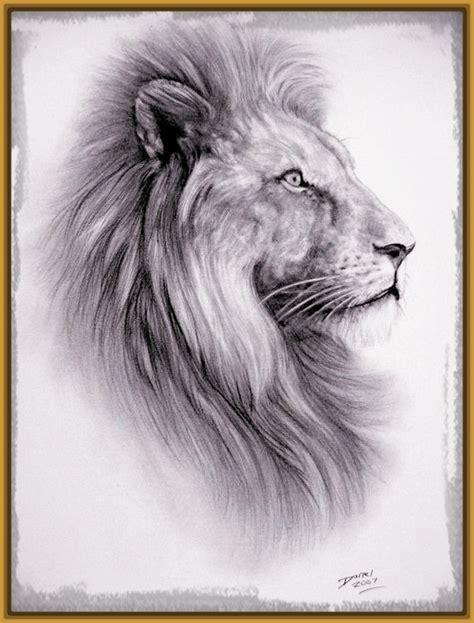 imagenes leones dibujos reales fotos de leones dibujados imagenes de leones