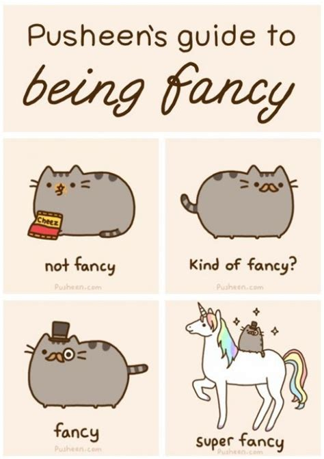 pusheen s guide to being fancy