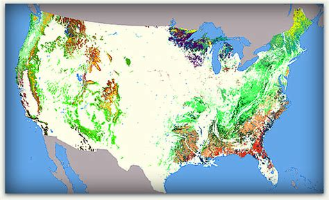 map us forests a foresting we will go a history of trees in san