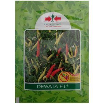 Benih Cabe Dewata F1 benih cabe rawit dewata f1 2 250 biji panah merah