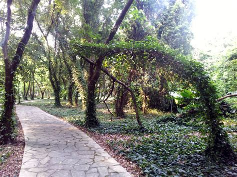 botanic garden china south china botanical garden in guangzhou attraction in