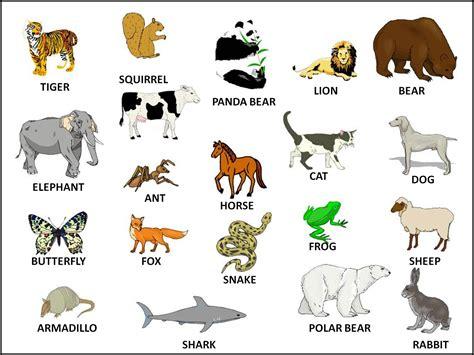 animals angliyskiy yazyk po skaypu podrazdel