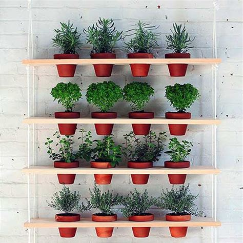 create a space saving vertical herb garden with these