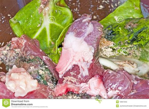 barf food barf food stock photography image 18951942