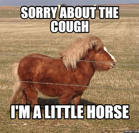 Funny Horse Memes - 20 of the funniest horse memes central steel build
