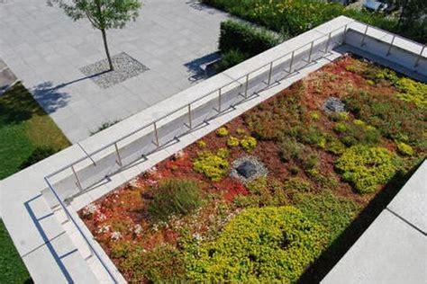 tetto giardino estensivo giardini verticali e tetti verdi il futuro 232 sempre pi 249 green