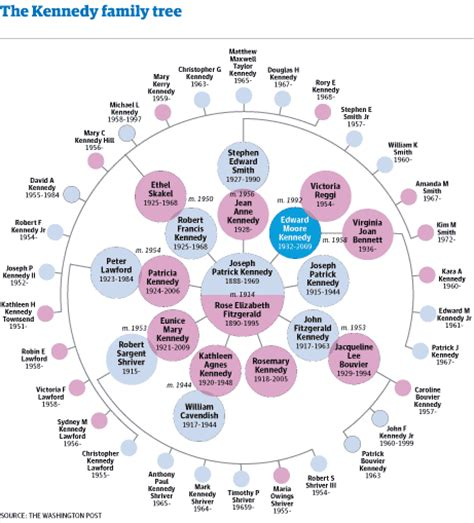 Chappaquiddick Analysis Image Gallery Kennedy Family Tree 2014