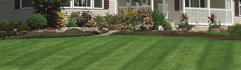 landscaping rochester ny landscaping lawn mowing rochester ny penfield snow
