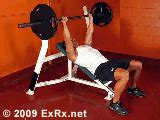 exrx bench press barbell incline bench press