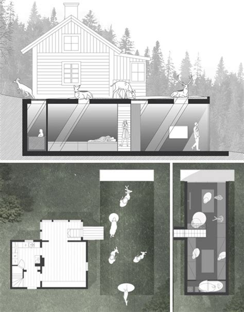 classic wood cottage gets underground concrete addition