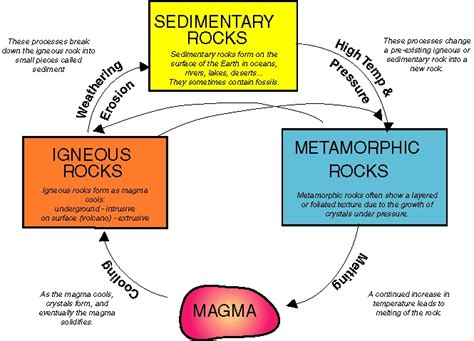 diagram of how sedimentary rocks are formed rock cycle student harrawood edps3140