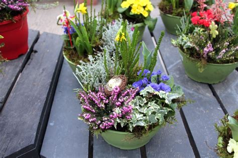 winter combo garden ideas from minter country gardens