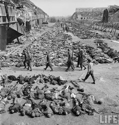 biography of hitler in bengali segunda guerra mundial mortos em co de concentra 231 227 o
