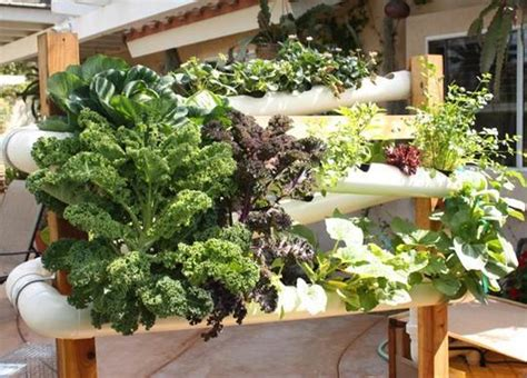 vertical pvc pipe vegetable garden vertical hydroponic earth gardens apartment therapy