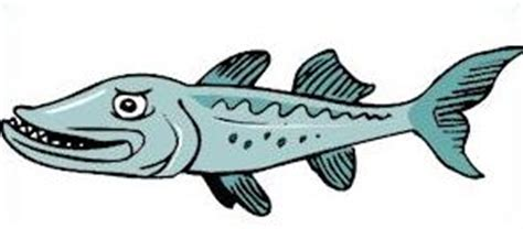 barracuda clipart free barracuda clipart clipart panda free clipart images