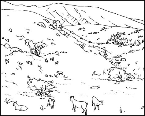 goat head coloring page free coloring pages of goat head