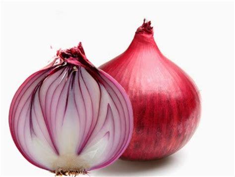 cara membuat zpt dari bawang merah 10 khasiat dan manfaat bawang merah manfaat sehat