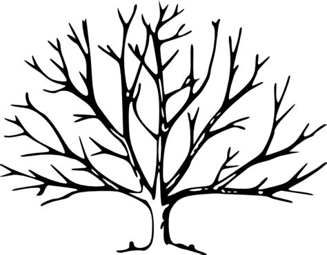 tree with no leaves clip art at clker com vector clip