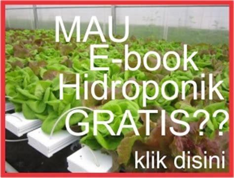 Jual Pupuk Hidroponik Cabe Di Surabaya jual benih pupuk organik herbal hidroponik