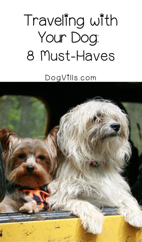 puppy must haves traveling with your 8 essentials to pack dogvills