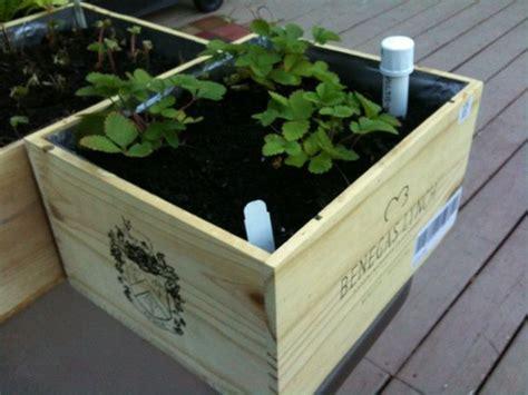 Wicking Planter Box wine box wicking planter boxes