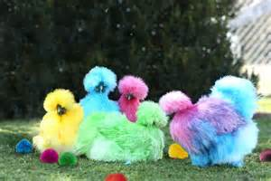 colored chickens the ultimate roundup of april fools day 2016 pranks