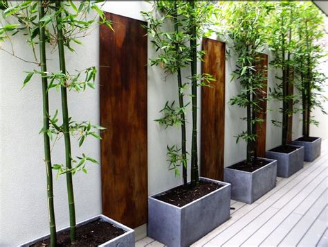 Bamboo Planter Ideas by Woody Likes Bamboo Privacy Screen Gardens