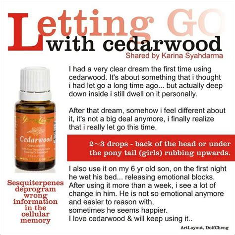hairgrowth with cedarwood essential oil before and after pics young living cedarwood woods cedarwood sandalwood