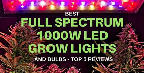 1000w led grow light spectrum best cheap spectrum led grow lights 1000w equivalent 2018