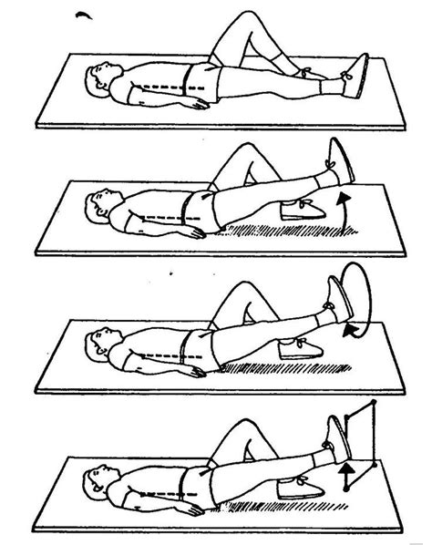 24 best physical therapy exercises for lower back images on physical therapy