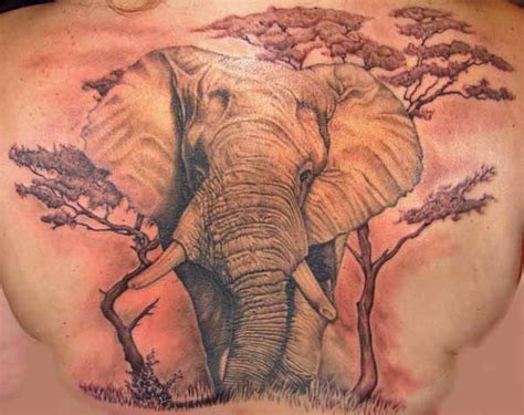 animal tattoo styles animal tattoos designs high quality photos and flash