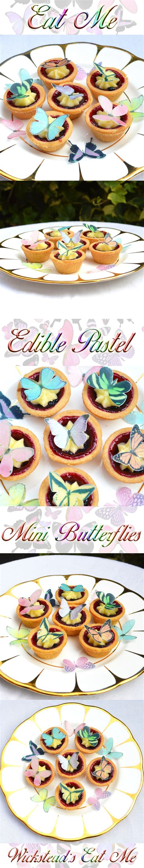 butterfly cookies butterfly cakes wafer paper tutorial edible butterflies pastel colours wafer rice paper mixed