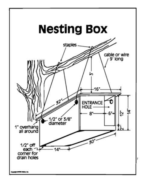 Great Horned Owl House Plans Car Building Plans Car Repair Manuals And Wiring Diagrams