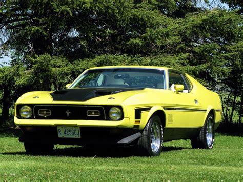 1971 mustang shelby 1971 mustang cobra car ford gt gt500 mustang