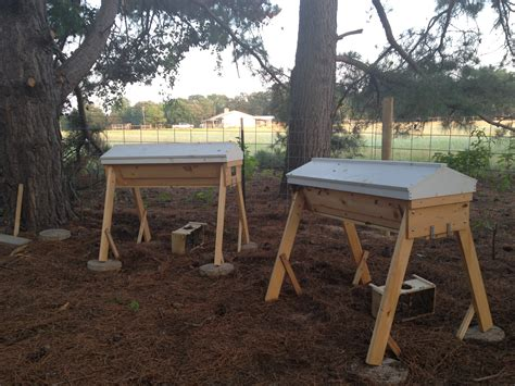 top bar beekeeping top bar beekeeping it s official we re beekeepers