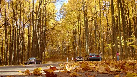 best drives in america best fall foliage drives in america life is suite