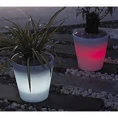 glow in the planters on glow planters