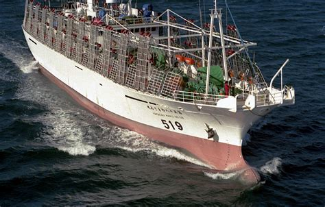 fishing boat sinks new zealand argentina sinks chinese vessel cites illegal fishing page 3