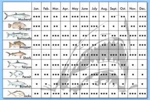 Fish Calendar Florida Fishing Calendar Season New Calendar Template Site