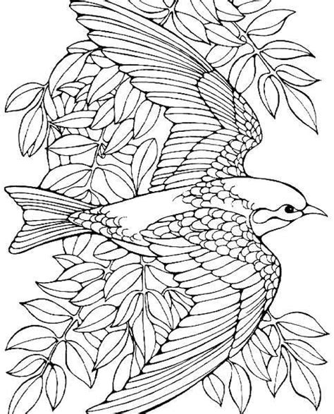 advanced dinosaur coloring pages bird coloring pages for adults coloring page purse