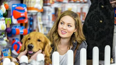 erika christensen hallmark erika christensen as bailey daley on my boyfriends dogs