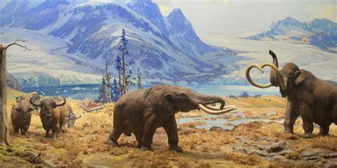 animal during great ice age ice age animals alaska